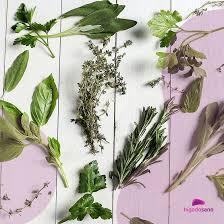 hierbas naturales